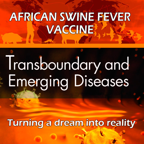 African swine fever vaccine: Turning a dream into reality